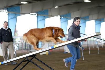 3-11-2018 Bloodhound-1767