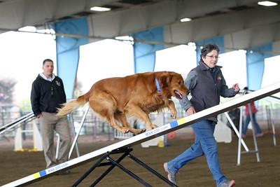 3-11-2018 Bloodhound-1766