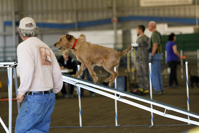3-11-2018 Bloodhound-3275