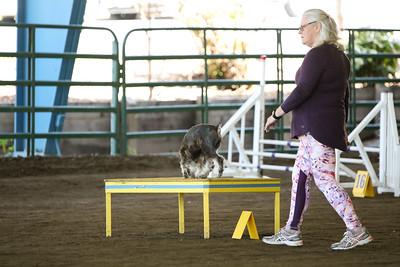 3-11-2018 Bloodhound-3287