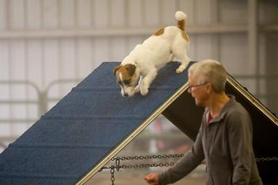 3-11-2018 Bloodhound-1516