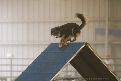 3-11-2018 Bloodhound-1497