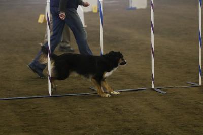 3-11-2018 Bloodhound-1504
