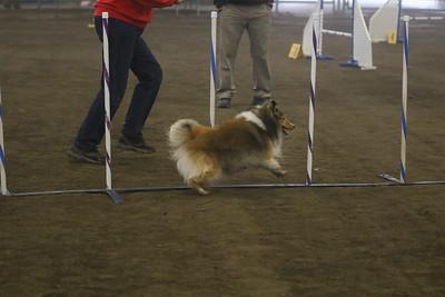 3-11-2018 Bloodhound-1473