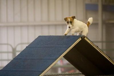 3-11-2018 Bloodhound-1512