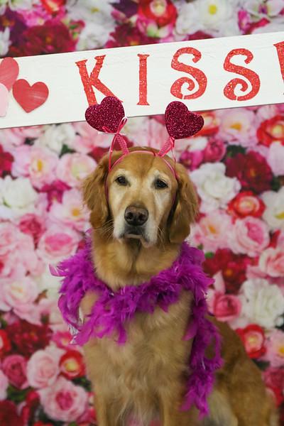 Valentine's Day Photo Opp