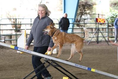 3-10-2019 Bloodhound-9714