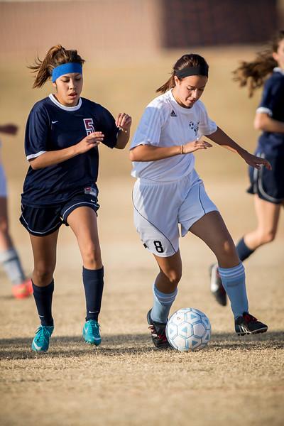 horizon_girls_soccer_100.jpg