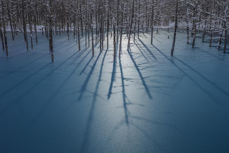 frozen [STUDY 4]