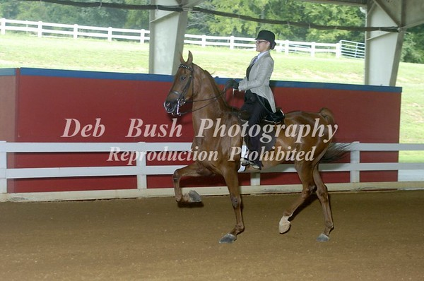 CLASS 17 OPEN PLEASURE NOVICE RIDER CHAMPIONSHIP