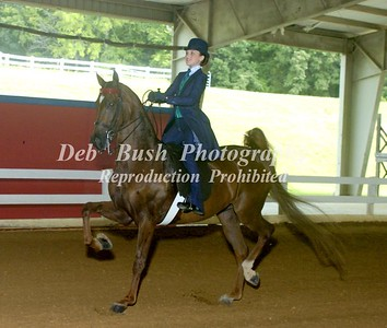 CLASS 18  WT EQUITATION 10 & UNDER CHAMPIONSHIP-  RIBBONS CAN BE MOVED