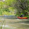 Verde River Institute Float Trip, Tapco to Tuzi, 5/24/17