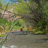 Verde River Institute Float Trip, Tapco to Tuzi, 5/3/18