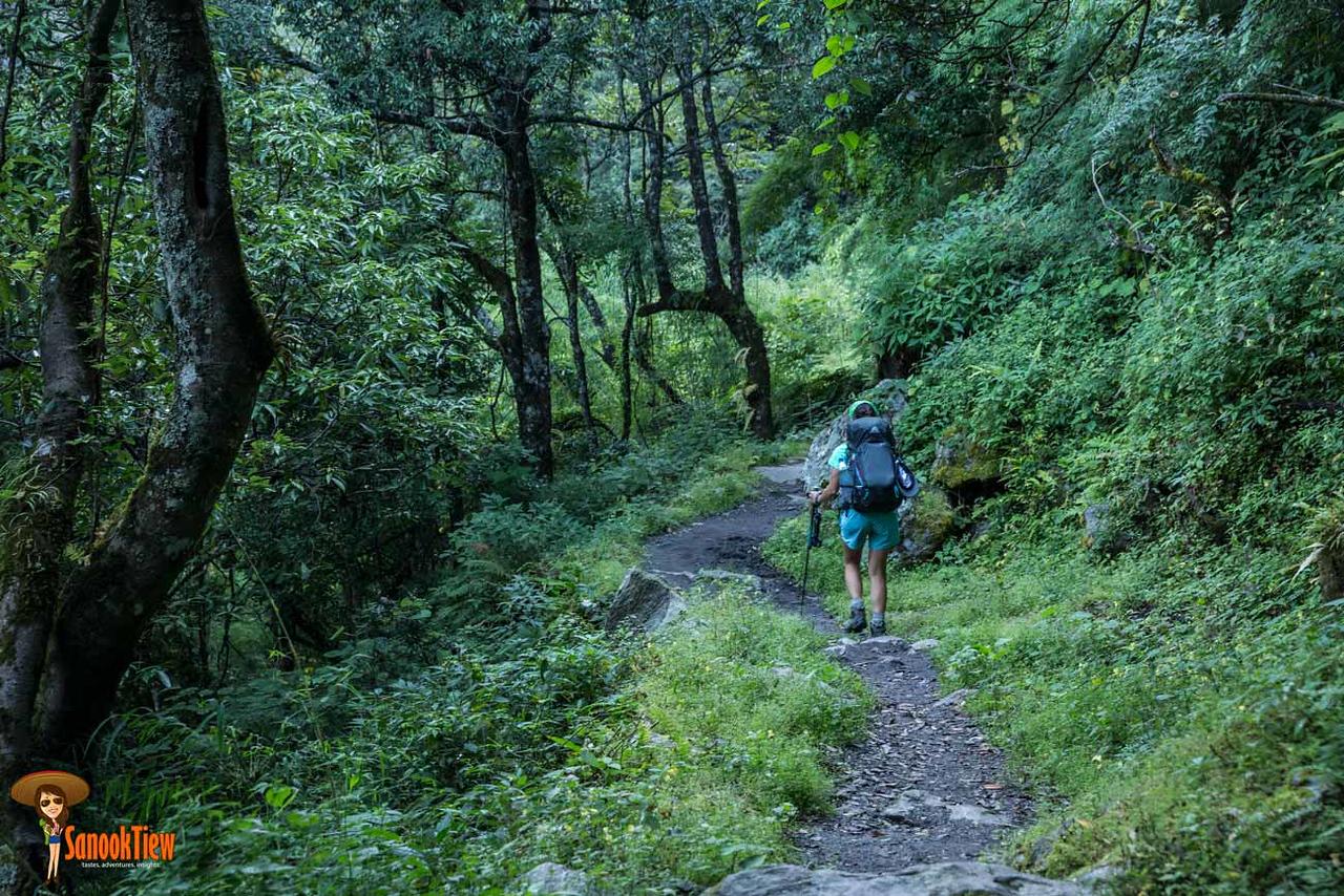 20 วัน เทรคกิ้ง Manaslu Circuit & Tsum Valley เนปาล จาก Mu Gompa ไป Namrung