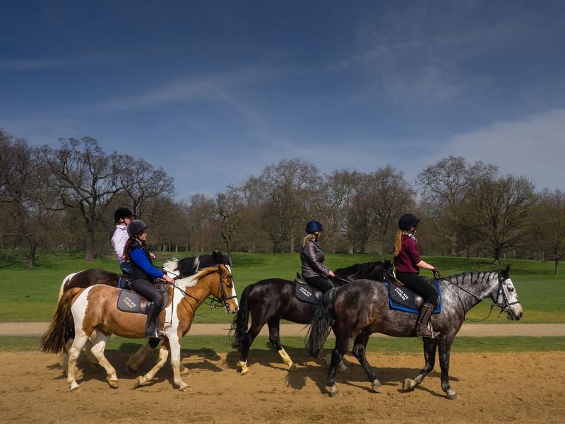 Vier Frauen auf je einem Pferd