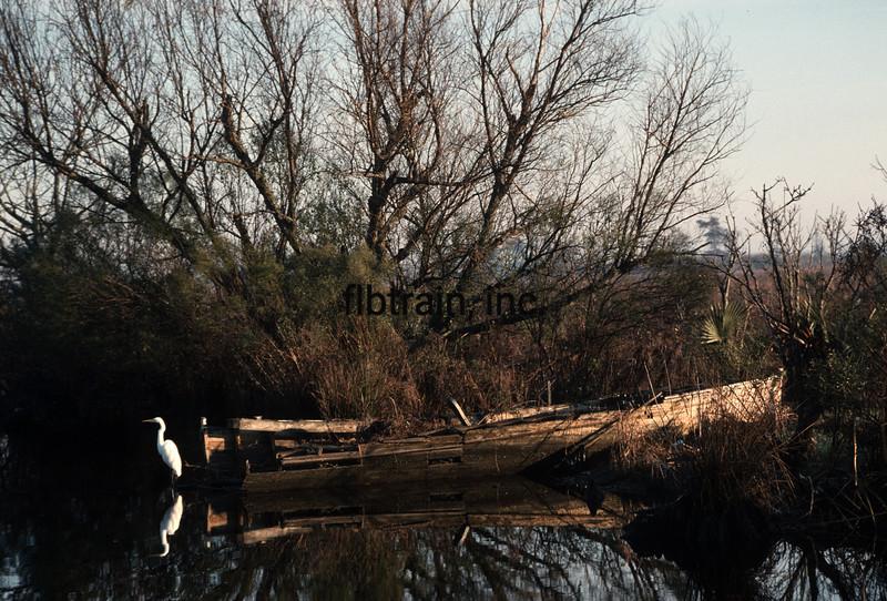 WL1989010008 - Manchac, LA, 1/1989