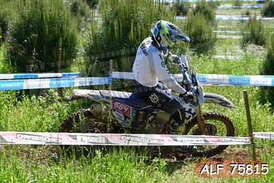 ALF 75815