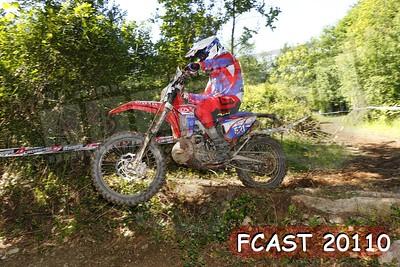 FCAST 20110