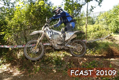 FCAST 20109