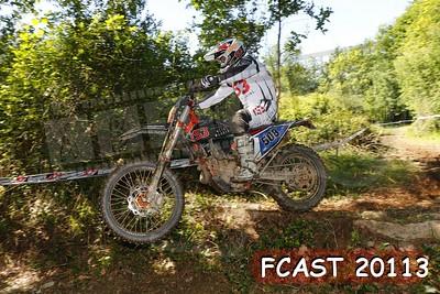 FCAST 20113