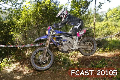 FCAST 20105