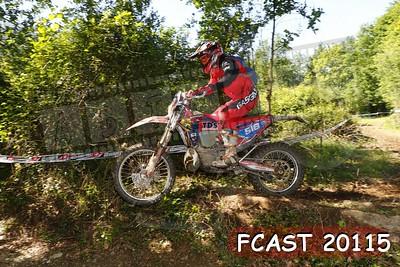 FCAST 20115