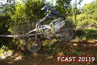 FCAST 20119