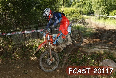 FCAST 20117