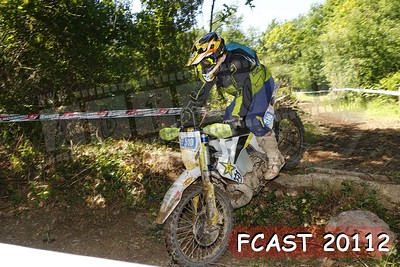 FCAST 20112