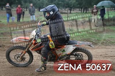 ZENA 50637