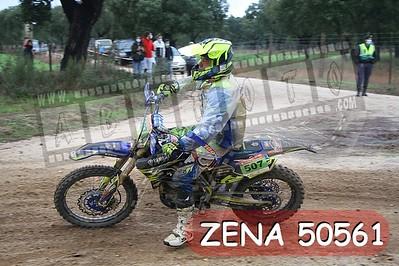 ZENA 50561