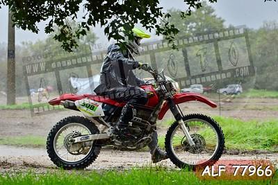 ALF 77966
