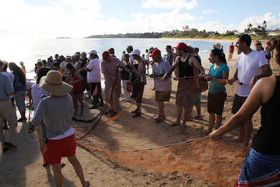 The other end of the net also comes ashore; Polynesian Cultural Center photo by Mike Foley