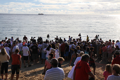 With the net almost all the way ashore, the crowd surges forward; Polynesian Cultural Center photo by Mike Foley