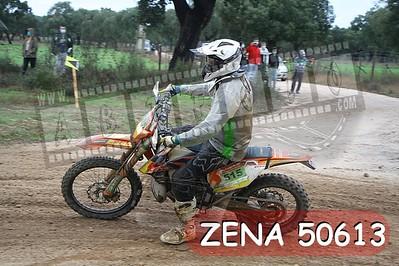 ZENA 50613