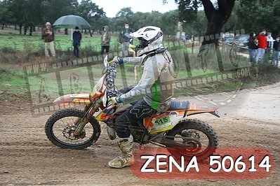 ZENA 50614
