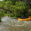 Verde River Institute Float Trip, Tapco to Tuzi, 5/18/19