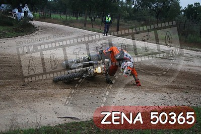 ZENA 50365