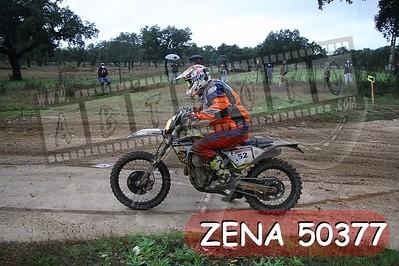 ZENA 50377