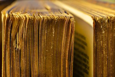 Week 12  Books
