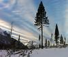 Cascade Sky