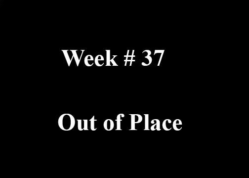 Week #37