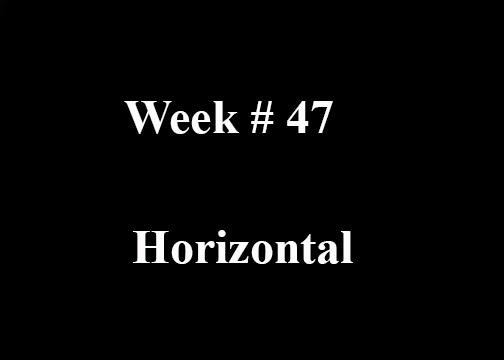 Week #47