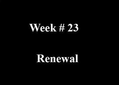 Week #23