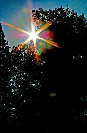 Don Week 36 Sunburst