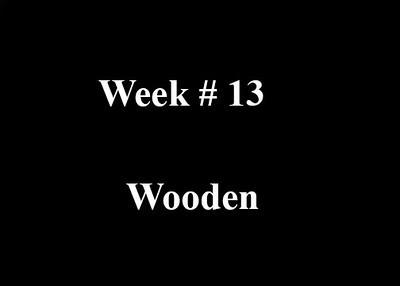 Week #13