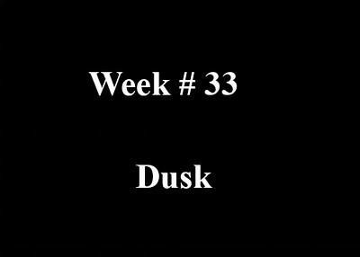 Week #33