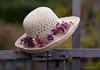 Debbie - Week #50 - Hats