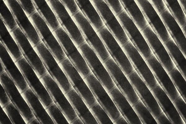 Rommel - Week 1 - Abstract