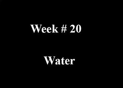 Week #20